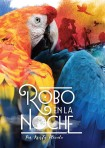 Robo en la noche – Novel