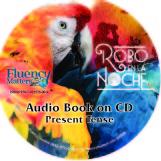 Robo en la noche – Audio Book on CD – Present Tense